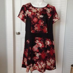 Adrianna Papell dress 18W